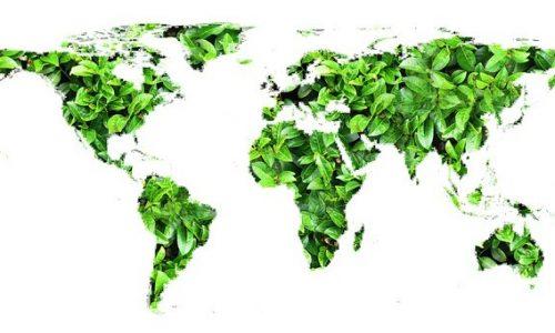 La nuova ISO 14001:2015: le principali novità