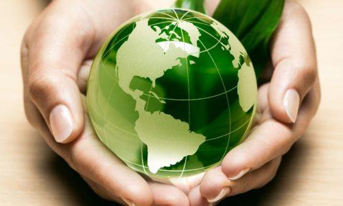 Gli esperti ambientali