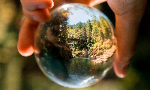 La politica ambientale e il codice etico aziendale